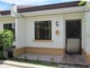 Bougainvillea 71 front