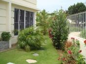 Cordova-house-262-lawn-view1