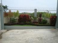 Cordova-house-262-lawn-view2