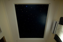House266-mbr-ceiling