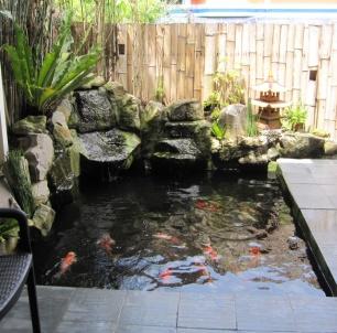 Mactan-house-330-Koi-pond